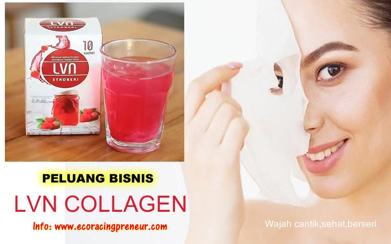 peluang bisnis keagenan lvn collagen